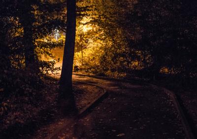 Forêt enchantée d'Onex