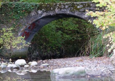 Onex: Rhône, Flore et faune