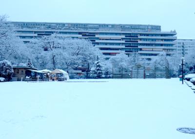 oh_neige010