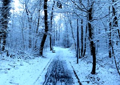 oh_neige013