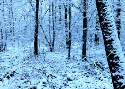 oh_neige014