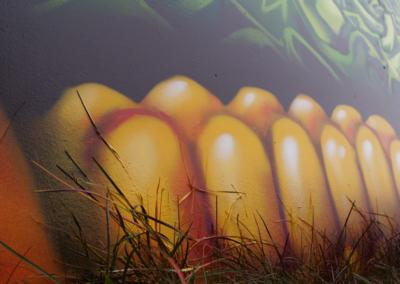 Fresque du Domaine des Mattines à Perly